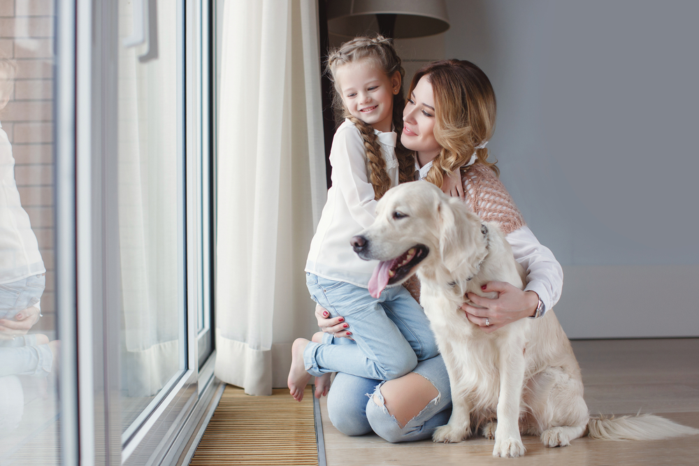 pets with family